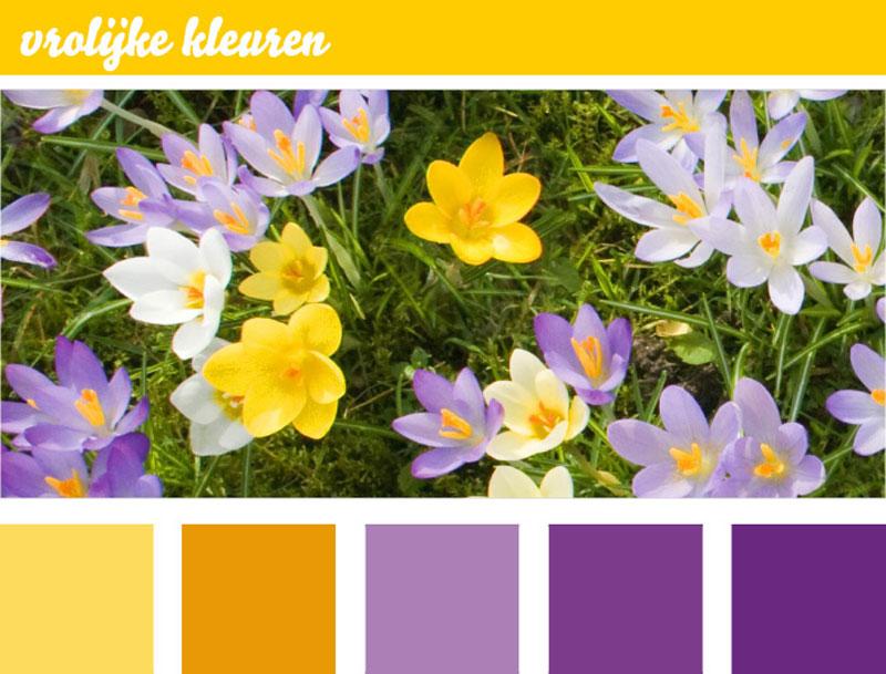 Blogafbeelding-vrolijke-kleuren